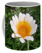 Australia - White Yellow Daisy Flower Coffee Mug