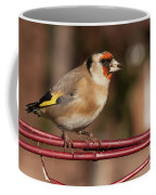 European Goldfinch Bird Close Up   Coffee Mug