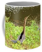 Female Anhinga Coffee Mug