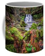 Goit Stock Waterfall Coffee Mug