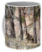 Mule Deer In The Pike National Forest Of Colorado Coffee Mug