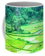 Rice Fields Scenery Coffee Mug