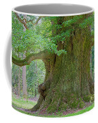 800 Years Old Oak Tree  Coffee Mug by Heiko Koehrer-Wagner