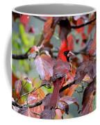 8624-001 - Northern Cardinal Coffee Mug
