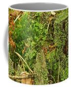Mosses And Liverworts 8861 Coffee Mug