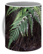 Australia - Hare's Foot Fern Coffee Mug