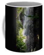 Gormon Falls Colorado Bend State Park.  Coffee Mug
