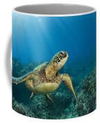 Green Sea Turtle Coffee Mug