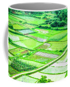 Rice Fields Scenery Coffee Mug