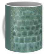 Sukkot-ushpizin Prayer- The Hosts... Coffee Mug