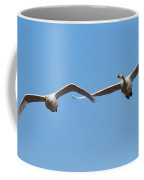 Whooper Swans Coffee Mug