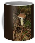 King Bolete 9062 Coffee Mug