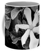 91142917070 Coffee Mug