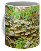 Polypores 9155 Coffee Mug