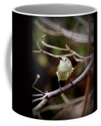 9343-00-ruby-crowned Kinglet Coffee Mug