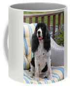 #940 D1034 Farmer Browns Springer Spaniel Coffee Mug
