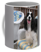 #940 D1036 Farmer Browns Springer Spaniel Happy For You Have A Happy Day Coffee Mug
