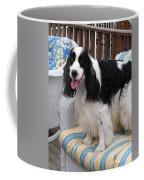 #940 D1040 Farmer Browns Springer Spaniel Cute Coffee Mug