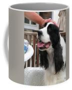 #940 D1041 Farmer Browns Springer Spaniel Good Girl Good Boy Attaboy Coffee Mug