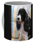 #940 D1043  Farmer Browns Springer Spaniel Smile Hidden Heart Coffee Mug
