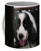 #940 D1049 Farmer Browns Springer Spaniel Coffee Mug