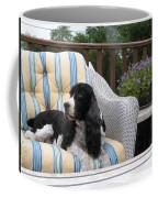 #940 D1052 Farmer Browns Springer Spaniel Coffee Mug