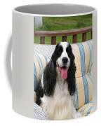 #940 D1088 Farmer Browns Springer Spaniel Coffee Mug