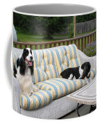 #940 D1094 Farmer Browns Springer Spaniel Together Coffee Mug