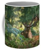 Majestic Powerful Red Deer Stag Cervus Elaphus In Forest Landsca Coffee Mug