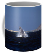 A Baby Humped Backed Whale Breeching In Banderous Bay Mexico Coffee Mug