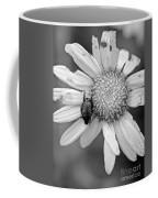 A Beetle And A Daisy  Coffee Mug