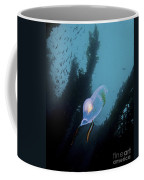 A Bioluminescent Tunicate, Catalina Coffee Mug