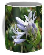 A Blooming Bud Coffee Mug