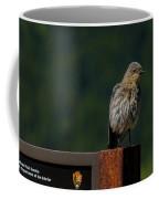 A Bluebird Welcome Coffee Mug