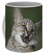 A Bobcat At A Wildlife Rescue Members Coffee Mug by Joel Sartore