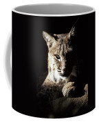 A Bobcat Sitting In A Ray Of Sun Coffee Mug by Jason Edwards