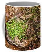 A Bowl Of Greens Coffee Mug