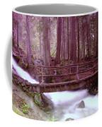 A Bridge To Paradise Coffee Mug