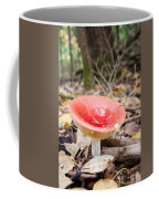 A Bright Red Mushroom Blooms Coffee Mug