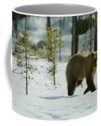 A Brown Bear Ursus Arctos Walks Coffee Mug