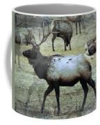 A Bull Elk  Coffee Mug