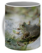 A Bullfrog At The Sunset Zoo Coffee Mug