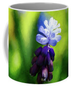 A Bunch Of Flowering Two-tone Grape Hyacinths, No.2. Coffee Mug