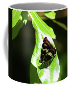 A Butterfly In The Sun  Coffee Mug