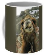 A Camel Displays Its Teeth Coffee Mug