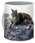 A Cat From Rome Coffee Mug