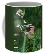 A Cedar Waxwing Facing Left Coffee Mug