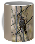 A Chipping Sparrow Coffee Mug