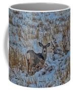 A Christmas Day Young Buck Coffee Mug