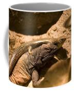 A Chuckwalla Lizard And A Skink Coffee Mug